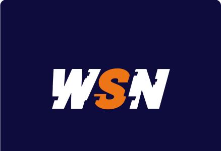 WSN Website logo